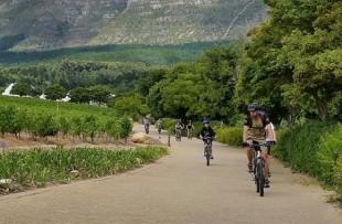 Active winelands - biking