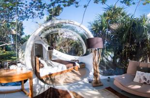 Bubble Suite