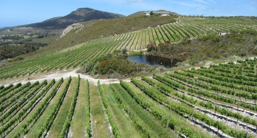 Hemel hermanus wine route fb5