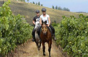 Horseback winetasing SAT1