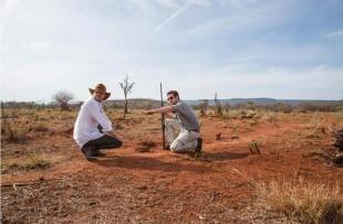 bush walk madikwe hills web