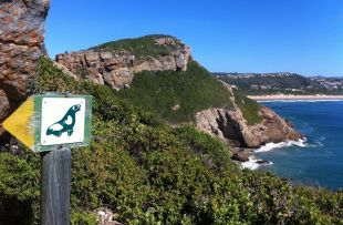 robberg hike robberg beach lodge2