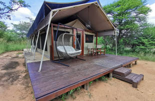 safari-plains-tentedsuite-4