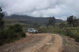 self drive safari tkzn fb1